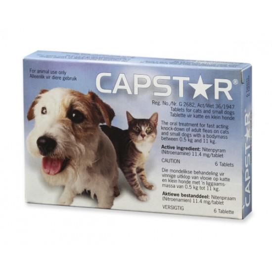 Capstar Small