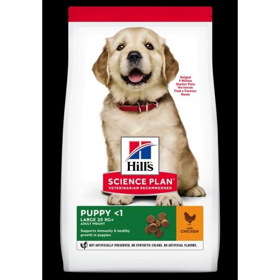 Hills Science Plan  puppy chicken L/b 16kg