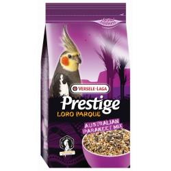 Prestige Australian Parakeet